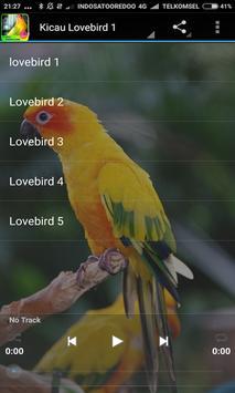 Juara Lovebird Ngekek panjang Terbaru poster