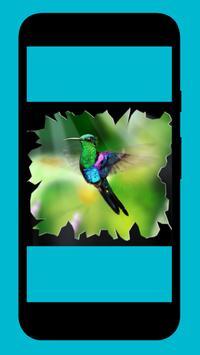 Kolibri apk screenshot
