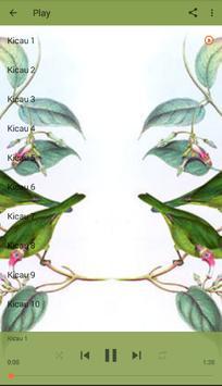 Master Kicau Cucak Ijo screenshot 6