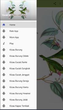 Master Kicau Cucak Ijo screenshot 8