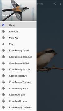 Master Kicau Burung Pentet poster