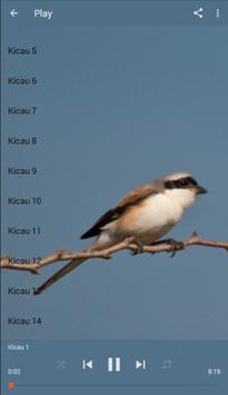 Master Kicau Burung Pentet apk screenshot
