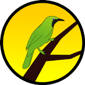 Kicau Burung Kepudang Emas icon