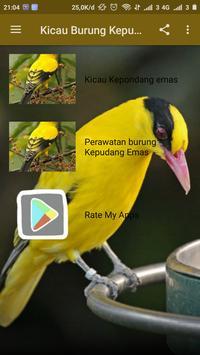 Kicau Burung Kepudang Emas poster