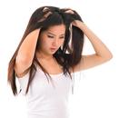 علاج قشرة الشعر APK