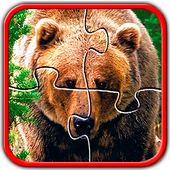 Bears Jigsaw Puzzles Brain Games for Kids FREE icon
