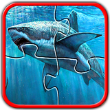 Sharks Jigsaw Puzzles Brain Games for Kids