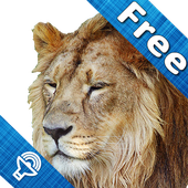 Kids Zoo, animal sounds & pictures, games for kids icon