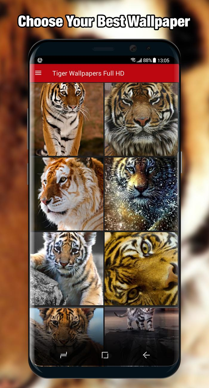 Tiger Wallpaper & Background Full HD poster