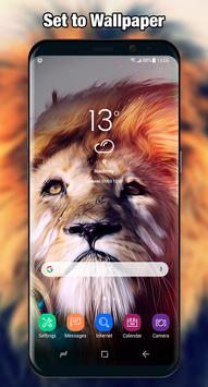 Lion Wallpaper & Background Full HD screenshot 3