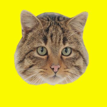 Domestic Animals Photo Sticker apk screenshot