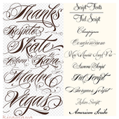 Calligraphy Lettering Styles icon