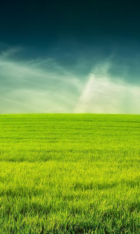 3d Grass Live Wallpaper Hd For Android Apk Download