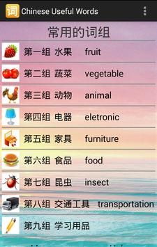 Chinese Useful Words poster