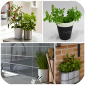 Kitchen Plant Shelves icon