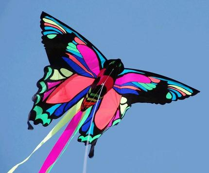 Creative Kite Designs poster