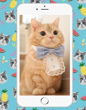 Sweet Kitty Cat screenshot 2
