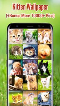 Kitten Wallpapers screenshot 16