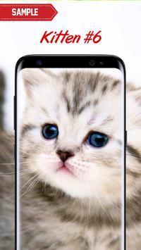 Kitten Wallpapers screenshot 22