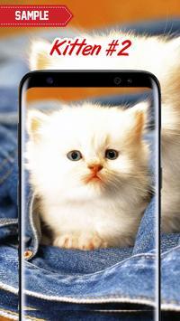 Kitten Wallpapers screenshot 2