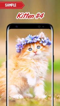 Kitten Wallpapers screenshot 4