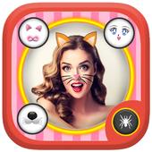 kity face ok icon