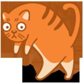 길냥이를찾아라 - 길냥이 구출 작전 icon