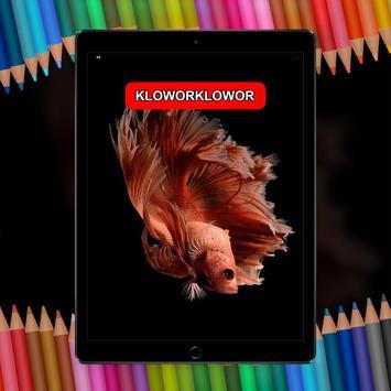 Betta Fish 3D Live HD poster