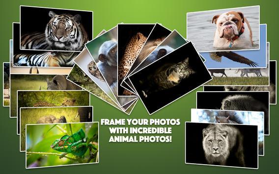 Wild Animal Photo Frames screenshot 8