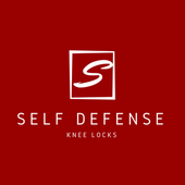 martial art knee locks icon