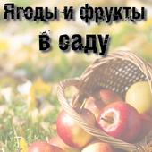 Ягоды и фрукты в саду icon