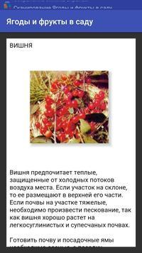 Ягоды и фрукты в саду screenshot 1