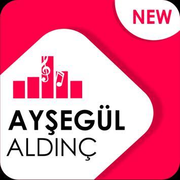 Ayşegül Aldinç - Aşk Gelince poster