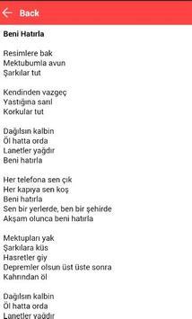 Ayşegül Aldinç - Aşk Gelince apk screenshot