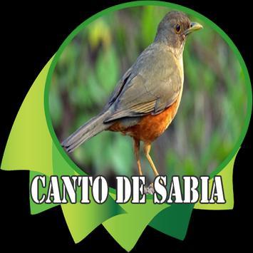 Canto de Sabia screenshot 1