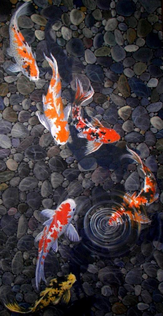 Koi Live Wallpaper 4k Hd For Android Apk Download