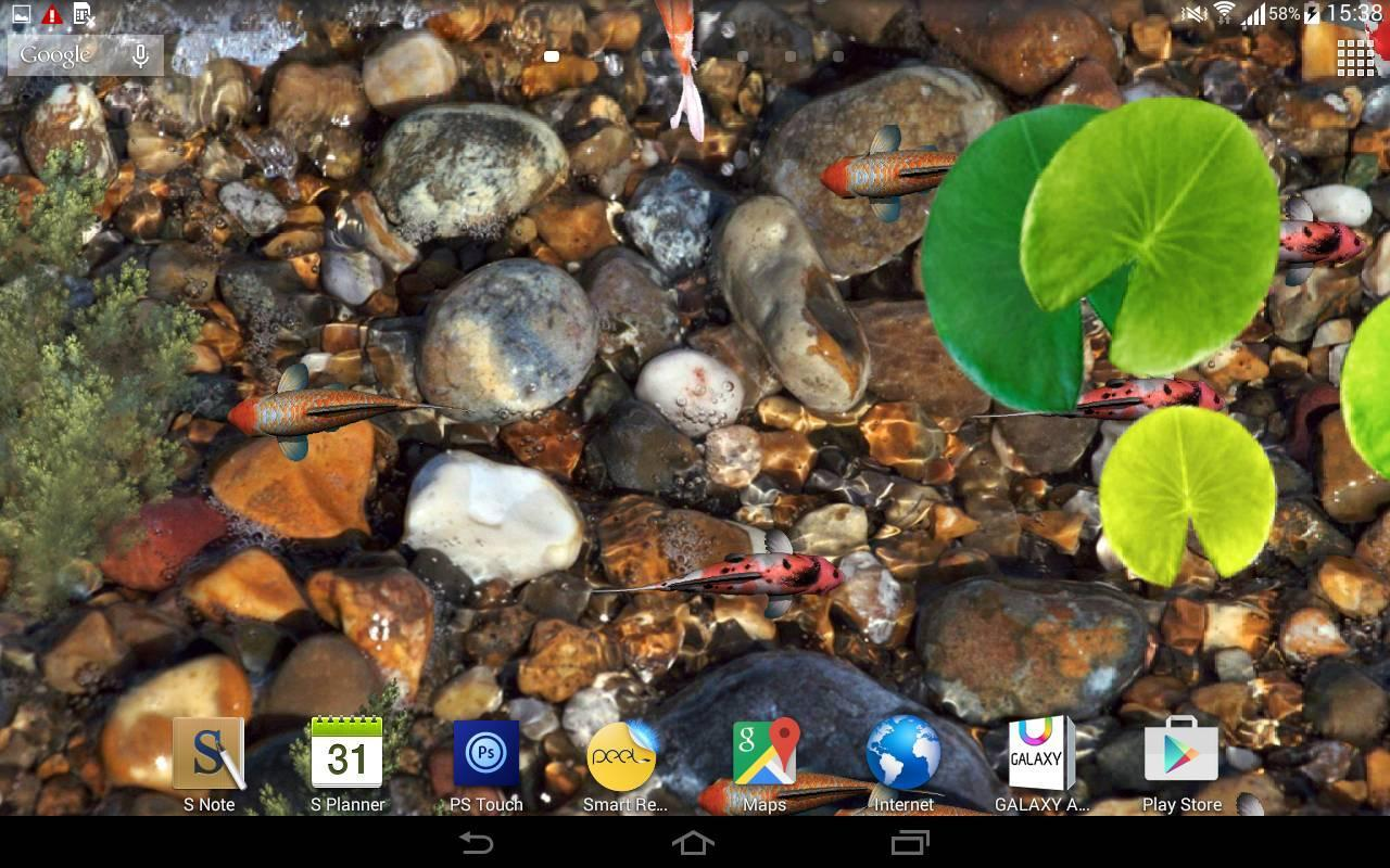 koi fish live wallpaper 3d for android apk download