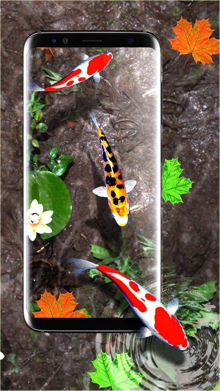 3D Koi Fish Wallpaper HD Live Wallpapers Free Screenshot 3