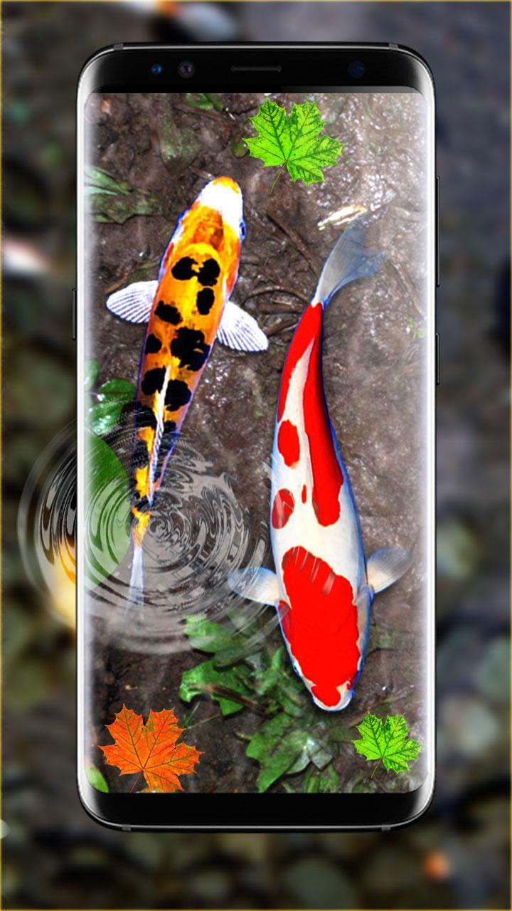 3d Koi Fish Wallpaper Hd Fish Live Wallpapers Free For Android Apk Download