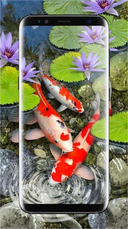 3D Koi Fish Wallpaper HD Live Wallpapers Free Screenshot 14