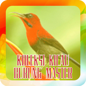 Koleksi Kicau Burung Master icon