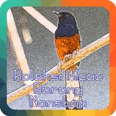 Koleksi Kicau Burung Nonstop icon
