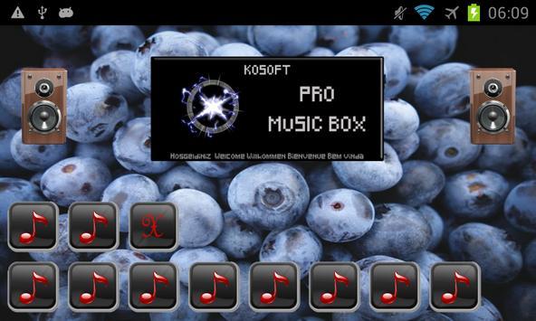 Pro Music Box screenshot 12