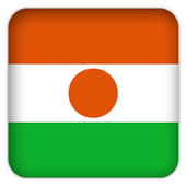 Selfie with Niger flag icon