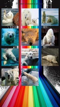 Polar Bears Slide Puzzles screenshot 1