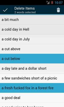 English Idioms screenshot 5