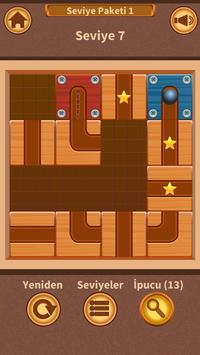 Save the Ball Puzzle screenshot 1