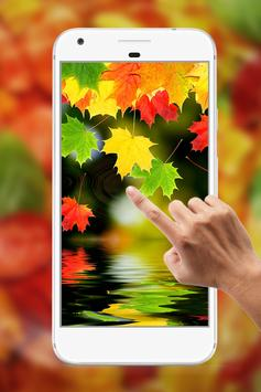 Autumn Water Ripple Live Wallpaper poster