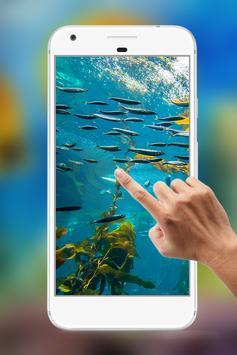 Water Garden Ripple Live Wallpaper screenshot 3