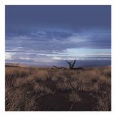 Bleak Wilderness Theme icon